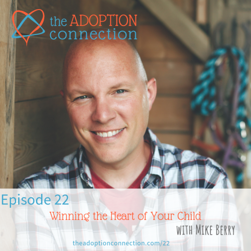 mike berry confessions of an adoptive parent
