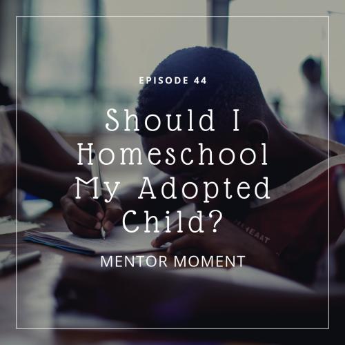 adoption homeschooling