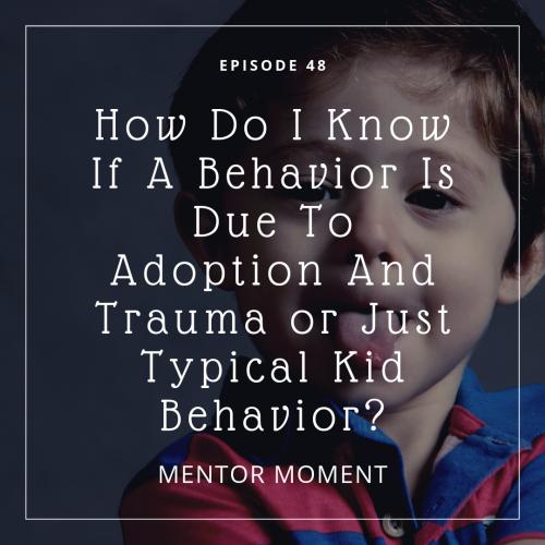 adoption, behavior, trauma