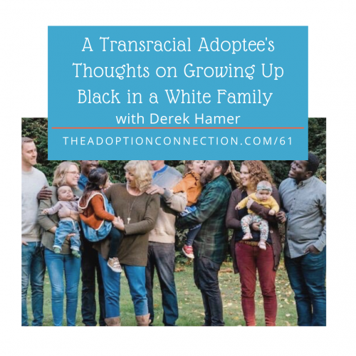 transracial adoption, adult adoptee