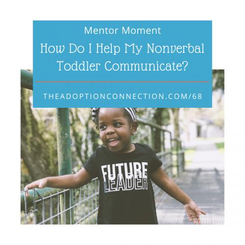 adoption, toddler, nonverbal